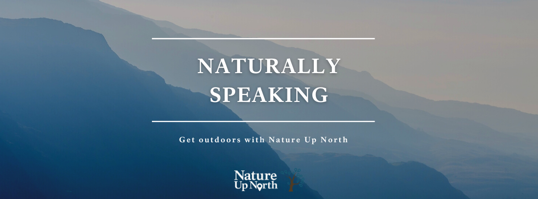 Naturally Speaking Banner