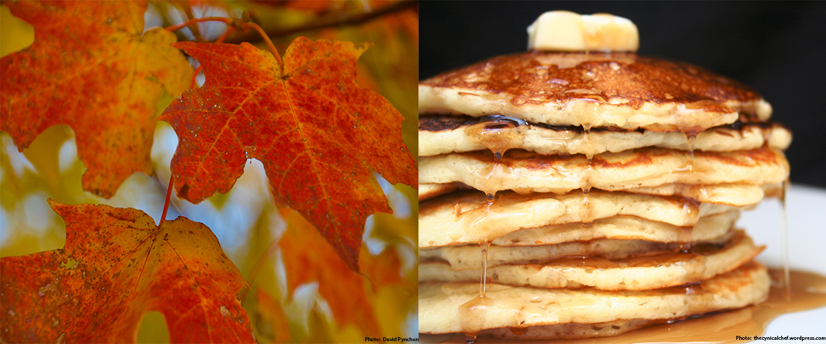sugar maples leaves (left) and pancakes with maple syrup (right)