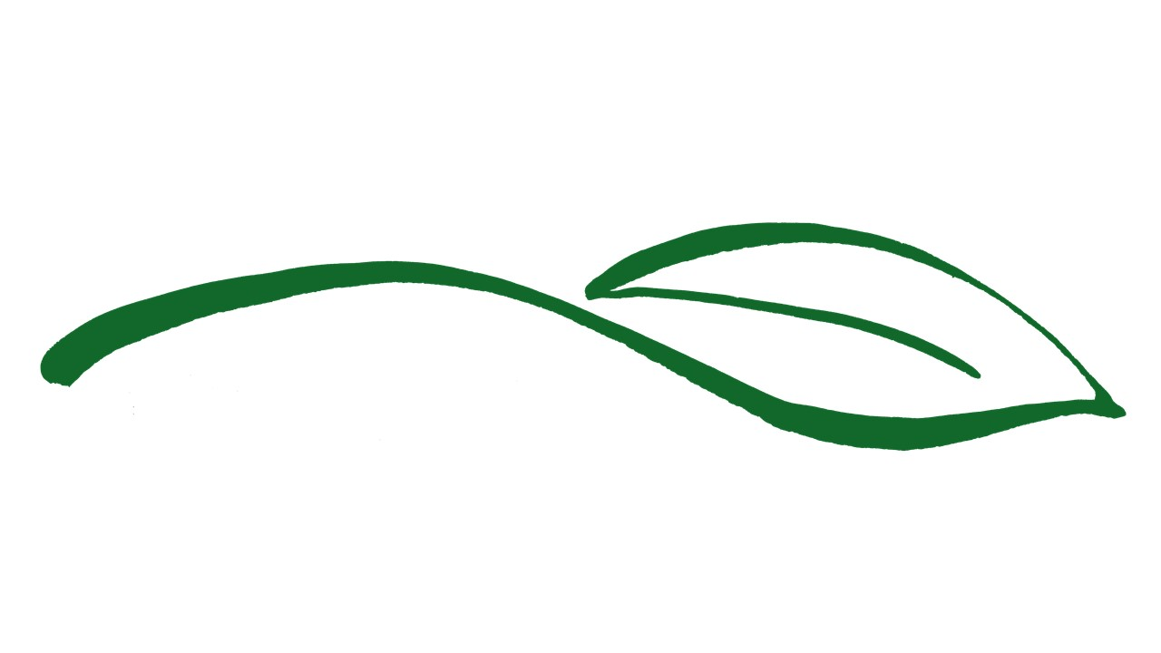 LLV logo is shown as a green leaf outline on white background