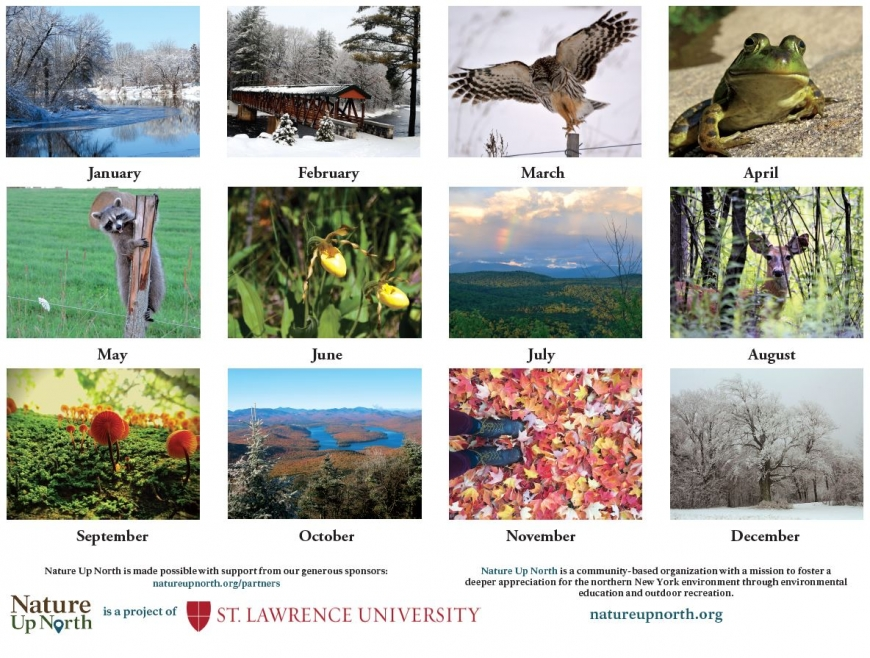 Back cover of calendar, with thumbnail photos of all 12 months and Nature Up North sponsor credits.