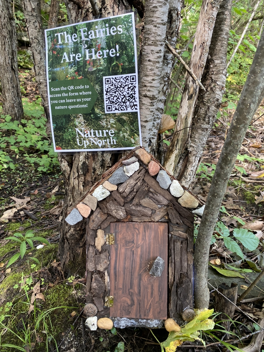 Brown wooden fairy house in woods with poster nailed to tree behind it