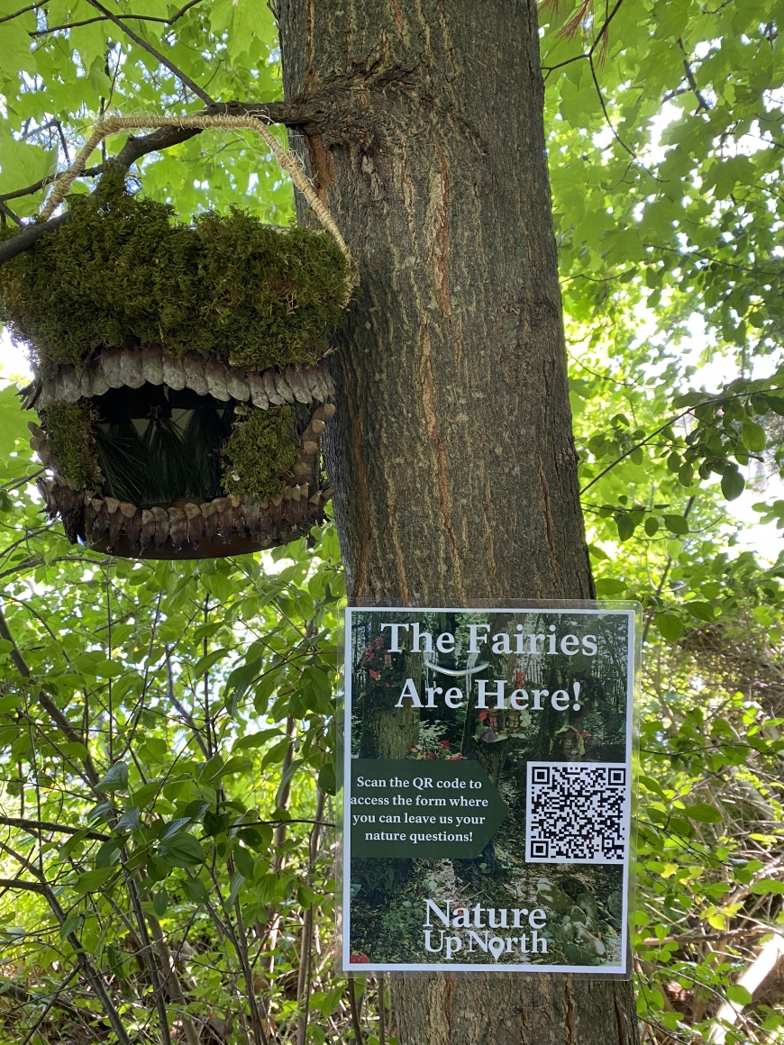 Brown bark covered fairy house hanging in tree with poster below it