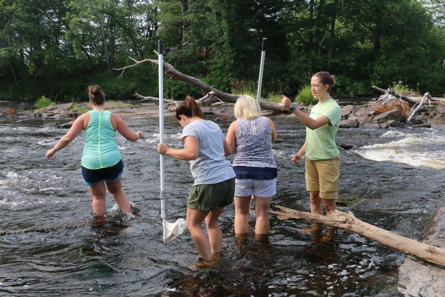 Teachers sample for macroinvertebrates in the Grasse River.