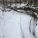 "Porcupine ""snow tube"""